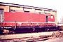 """LEW 18239 - DR """"243 016-3"""" 13.03.1991 - Dessau, ReichsbahnausbesserungswerkHelmuth Cohrs"""