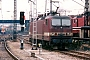 "LEW 19543 - DB AG ""143 301-0"" 30.04.1995 - DresdenFrank Weimer"