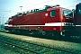 """LEW 19545 - DB AG """"143 303-6"""" 07.03.1996 - Mannheim, BahnbetriebswerkErnst Lauer"""