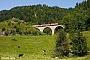 "LEW 19558 - DB Regio ""143 316-8"" 19.08.2012 - RavennaviaduktStefan Sachs"