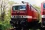 """LEW 19586 - DB AG """"143 344-0"""" 16.05.1999 - Cottbus, BetriebswerkOliver Wadewitz"""