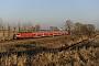 "LEW 21300 - DB Regio ""114 007-8"" 03.03.2011 - BredowSebastian Schrader"